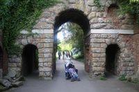 CChafer Kew2